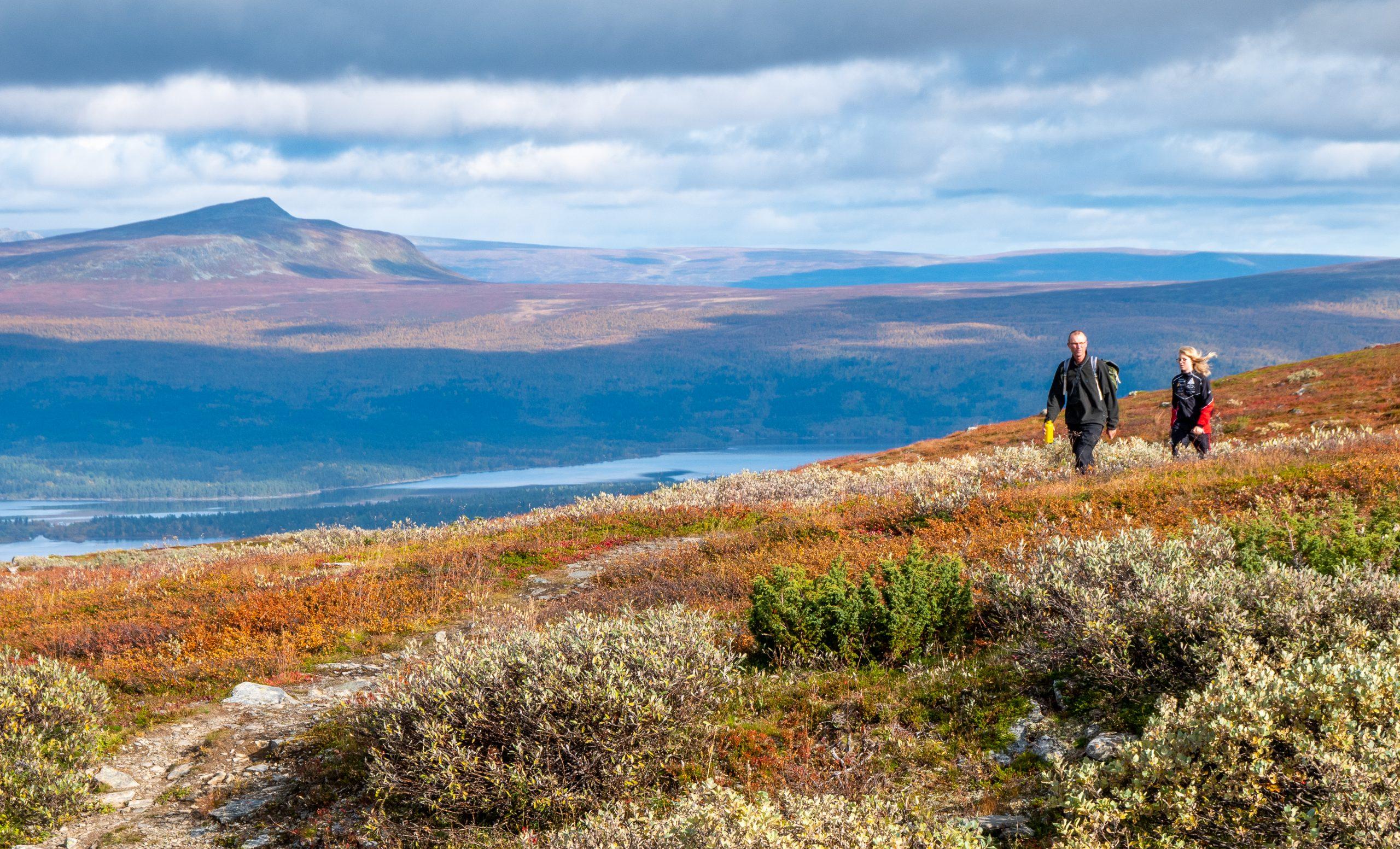 Pieljekaise – nationalpark i Arjeplogsfjällen