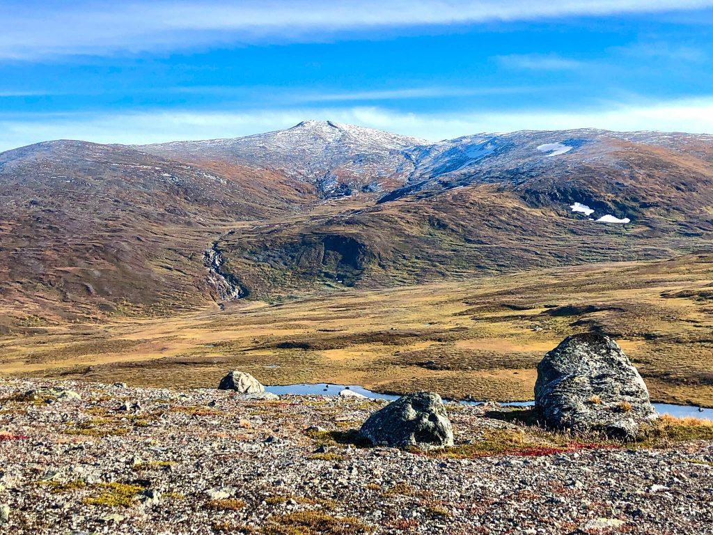 Vy mot Artfjället i Vindelfjällens naturreservat